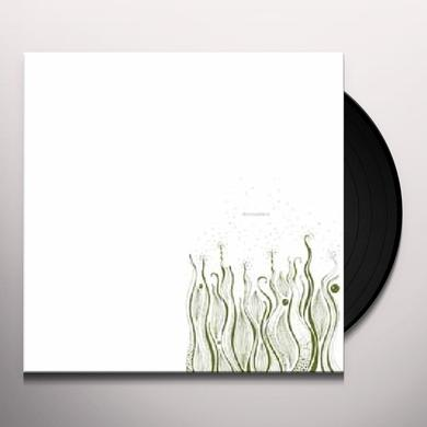 Manatee INDECISION Vinyl Record