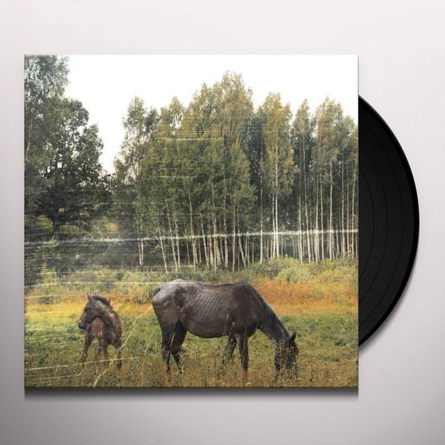 Pianos Become The Teeth OLD PRIDE Vinyl Record