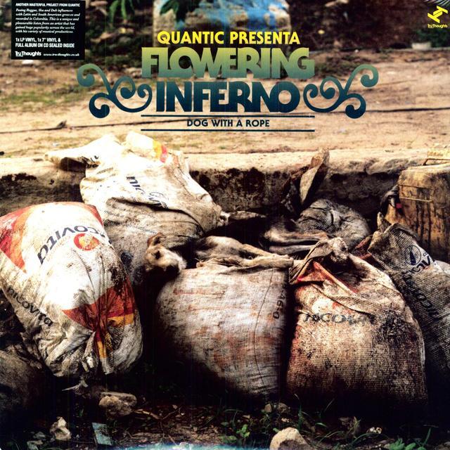 Panama Cardoon merch