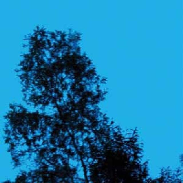 Gate REPUBLIC OF SADNESS Vinyl Record