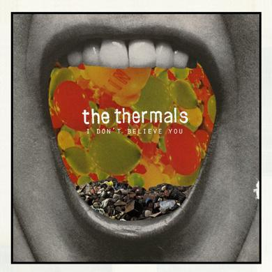 The Thermals I DON'T BELIEVE YOU Vinyl Record