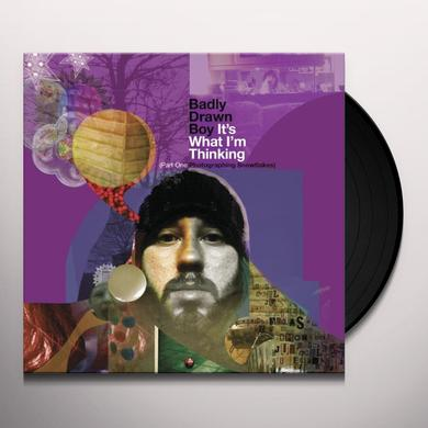 Badly Drawn Boy ITS WHAT IM THINKING: PART ONE PHOTOGRAPHING SNOW Vinyl Record