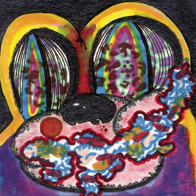 Cage The Elephant THANK YOU HAPPY BIRTHDAY Vinyl Record