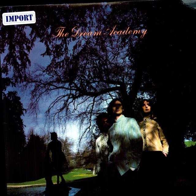 DREAM ACADEMY Vinyl Record