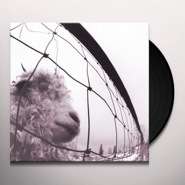 Pearl Jam VS Vinyl Record