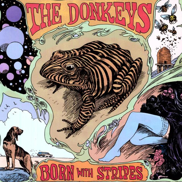 Donkeys BORN WITH STRIPES Vinyl Record