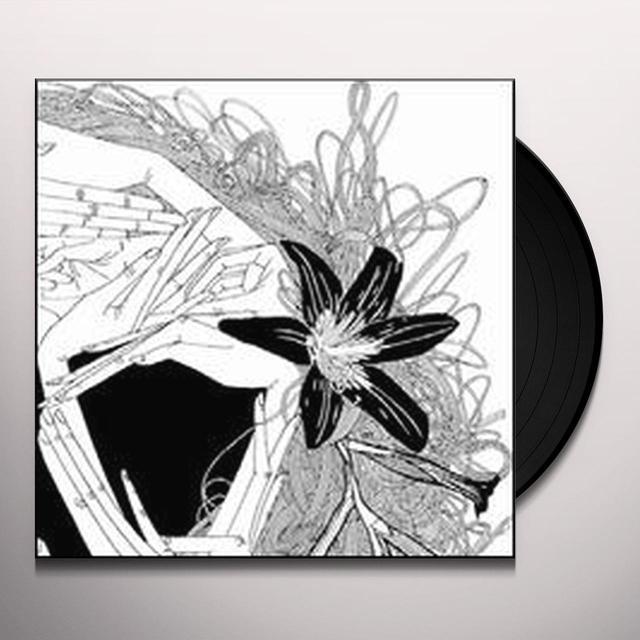 AMAI #2/4 / VARIOUS Vinyl Record