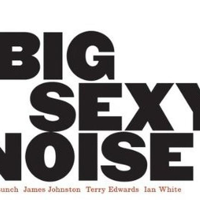 BIG SEXY NOISE Vinyl Record