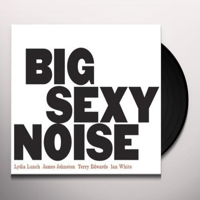 BIG SEXY NOISE Vinyl Record