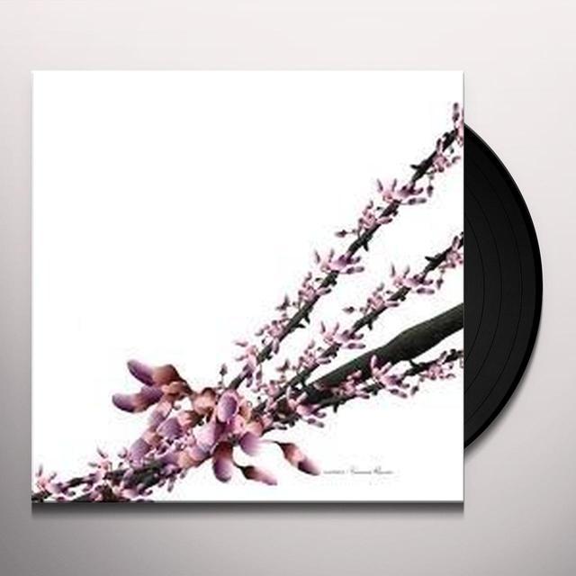 Luciano YAMORE REMIX / HARMONICS CRASHES Vinyl Record