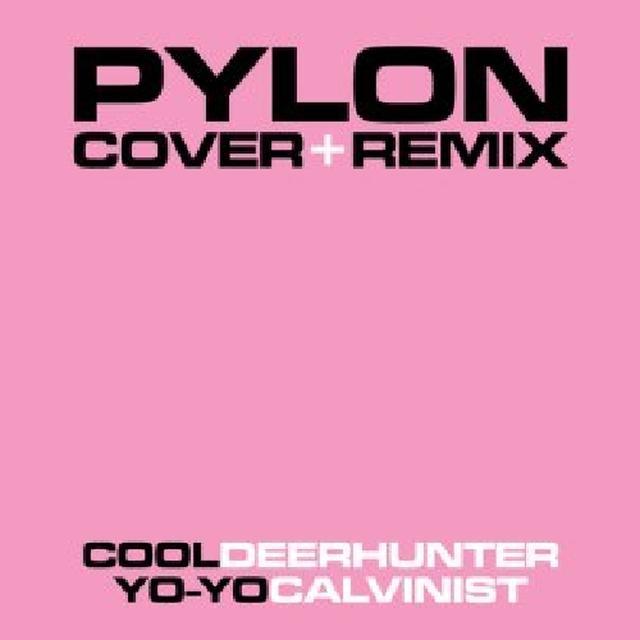 Pylon COVER & REMIX Vinyl Record