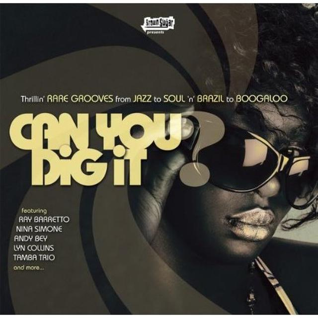 CAN YOU DIG IT / VARIOUS Vinyl Record
