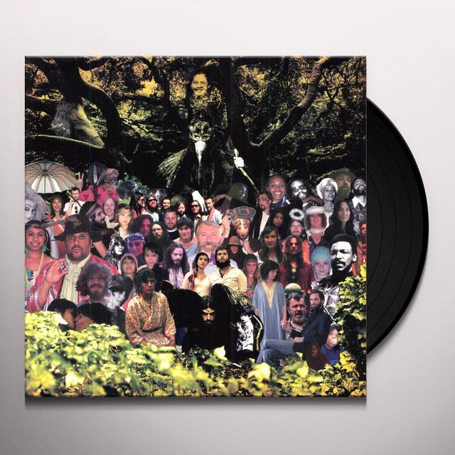 Devendra Banhart CRIPPLE CROW Vinyl Record - Canada Import