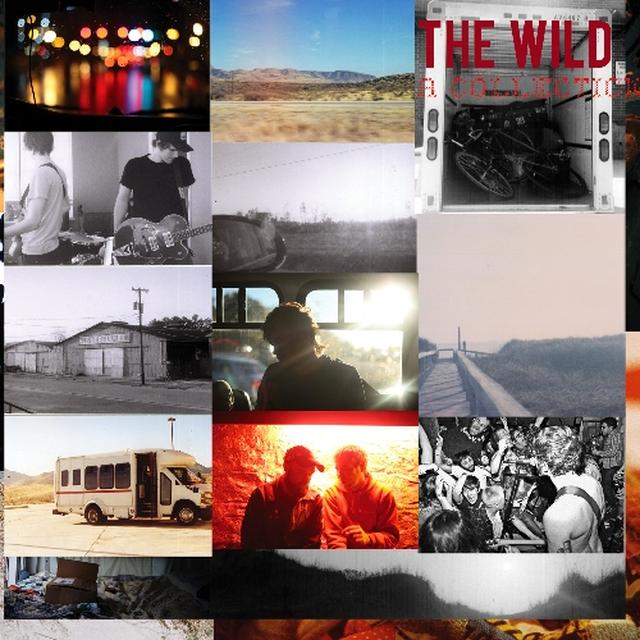 Wild COLLECTION Vinyl Record