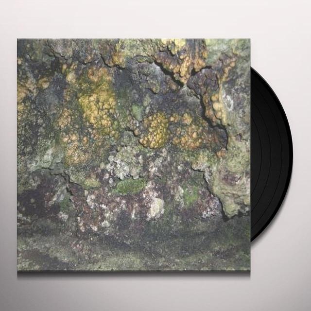 Hive Mind ELEMENTAL DISGRACE Vinyl Record