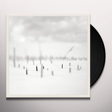 Taylor Deupree / Marcus Fischer IN A PLACE OF SUCH GRACEFUL SHAPES Vinyl Record - w/CD