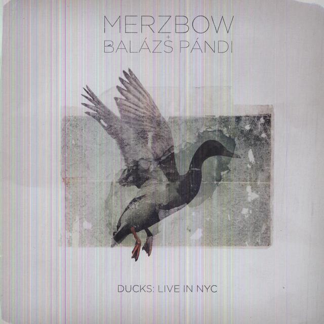 Merzbow & Balazs Pandi DUCKS: LIVE IN NYC Vinyl Record