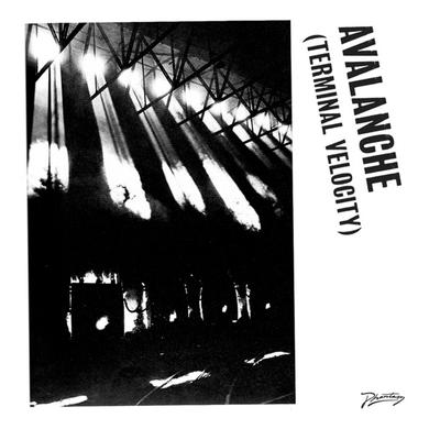 Erol / Boys Noize Alkan AVALANCHE (TERMINAL VELOCITY) Vinyl Record