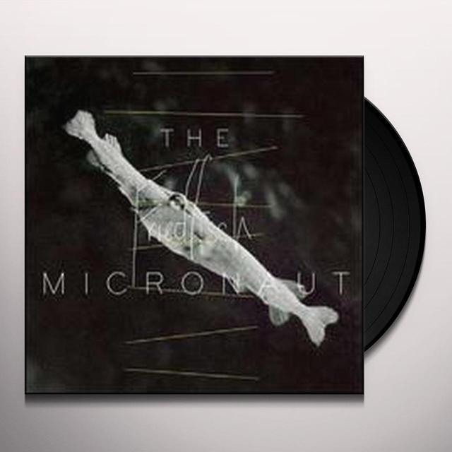 Micronaut FRIEDFISCH (EP) Vinyl Record