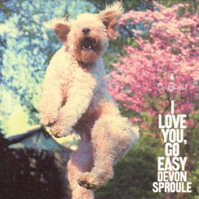 Devon Sproule I LOVE YOU GO EASY Vinyl Record