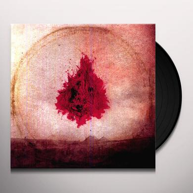 Adam Arcuragi LIKE A FIRE THAT CONSUMES ALL BEFORE IT Vinyl Record