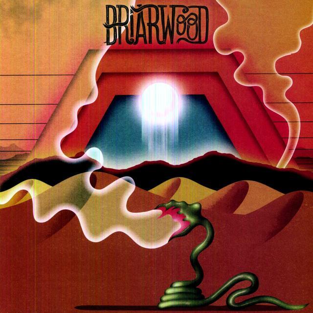 Wooden Wand BRIARWOOD Vinyl Record