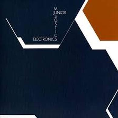 Junior Electronics MUSOSTICS Vinyl Record