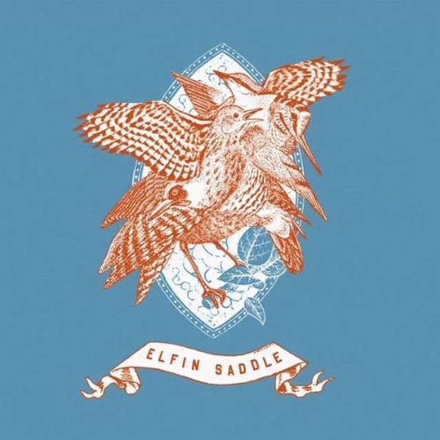 Elfin Saddle DEVASTATES Vinyl Record