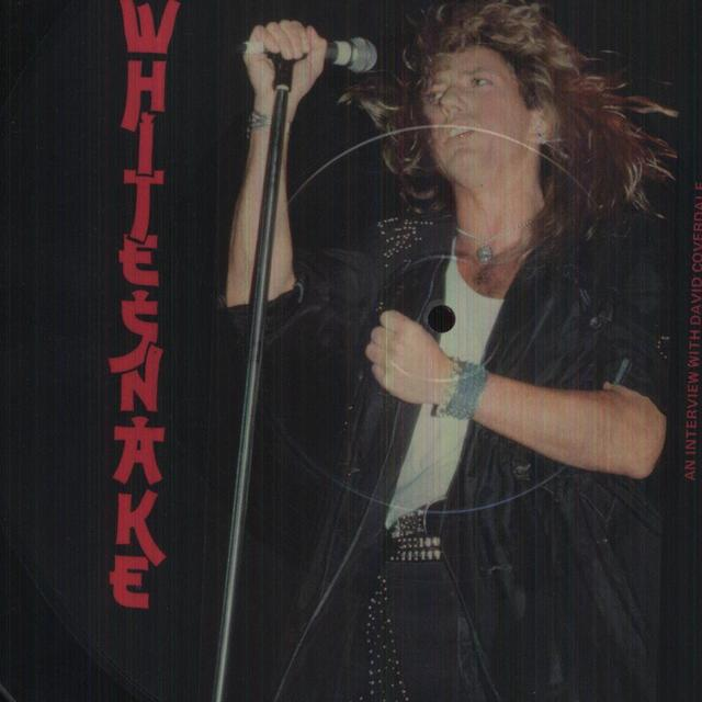 Whitesnake BAT SHAPED PICTURE DISC Vinyl Record