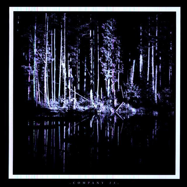 Matt Chamberlain COMPANY 23 Vinyl Record - Limited Edition