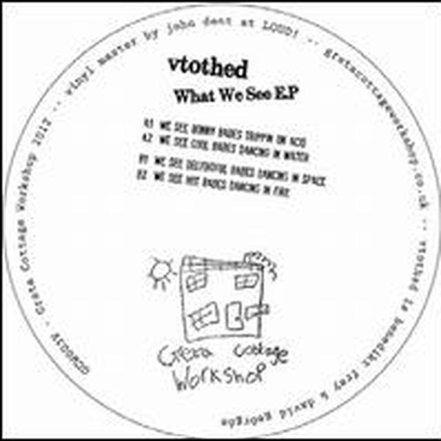 Vtothed WHAT WE SEE Vinyl Record