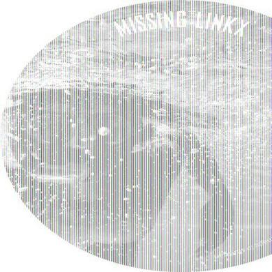 Missing Linkx SO HAPPY Vinyl Record