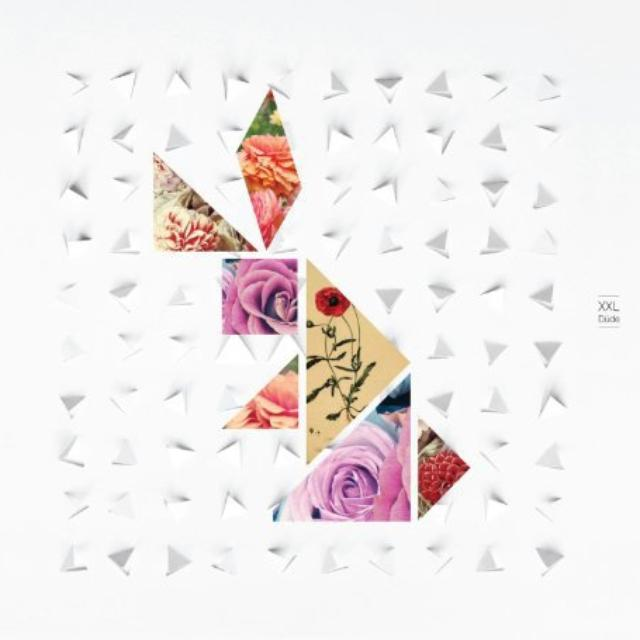 Xxl DUDE Vinyl Record