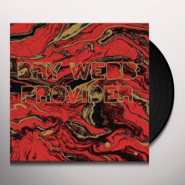 Bry Webb PROVIDER Vinyl Record