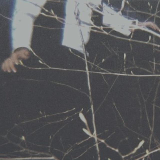 Cemeteries WILDERNESS Vinyl Record