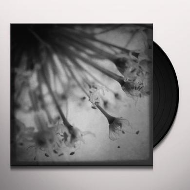 Field Rotation ACOUSTIC TALES Vinyl Record