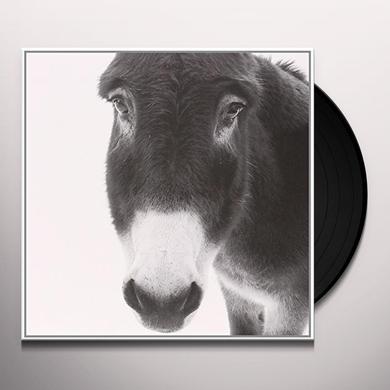 Ava Mollono.Bass / Asante GOLDENBAUM Vinyl Record