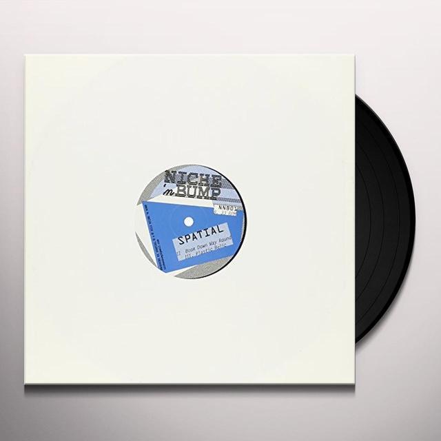 Spatial SLAMMER (EP) Vinyl Record