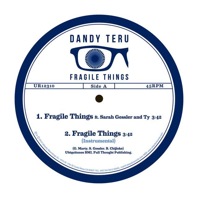 Dandy Teru FRAGILE THINGS Vinyl Record