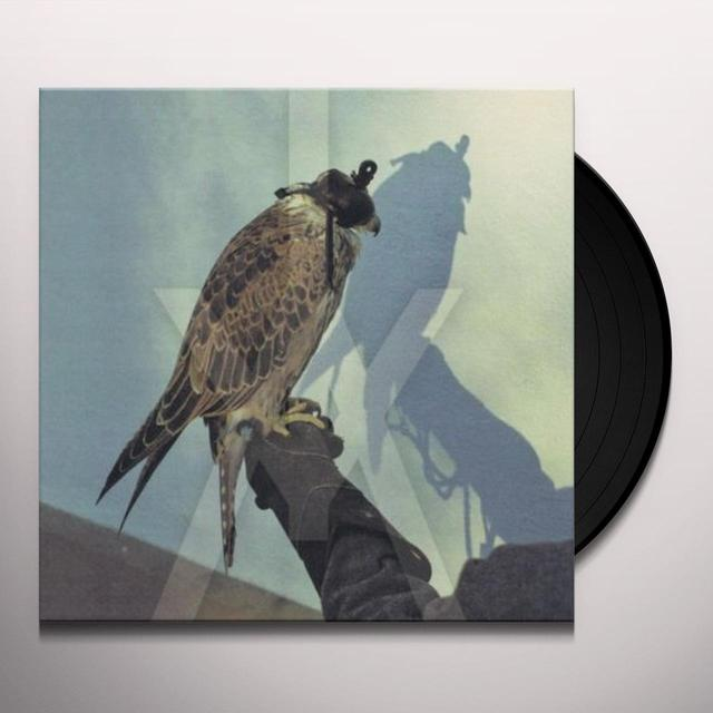 Iceage YOU'RE NOTHING Vinyl Record