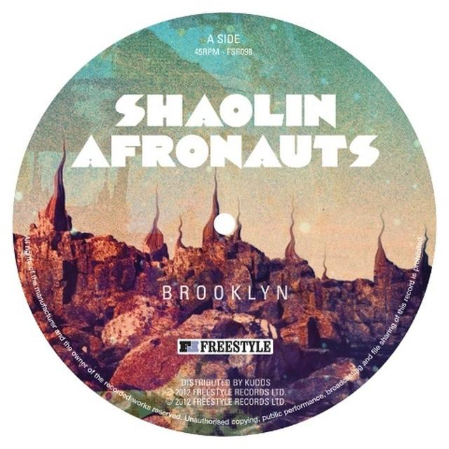 The Shaolin Afronauts