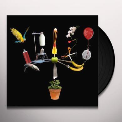 Fiction BIG OTHER Vinyl Record