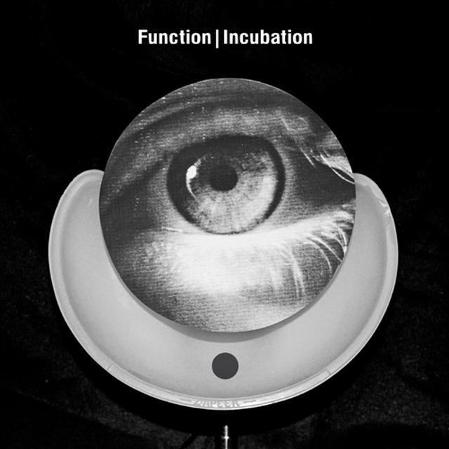 Function INCUBATION Vinyl Record
