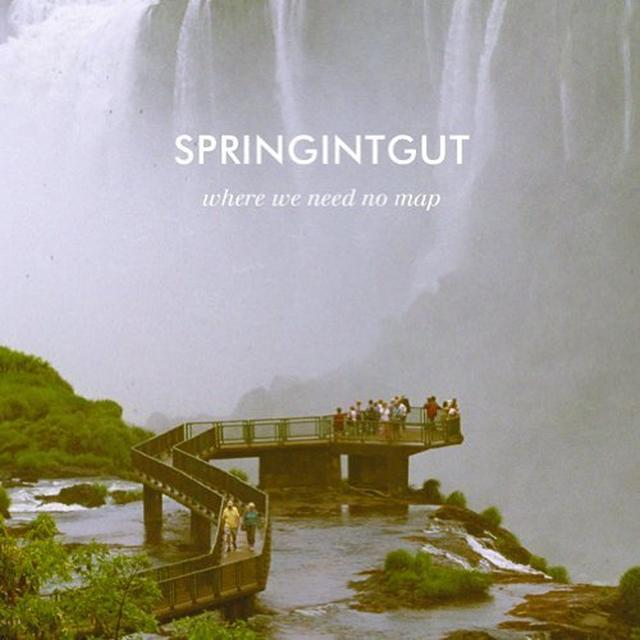 Springintgut WHERE WE NEED NO MAP Vinyl Record