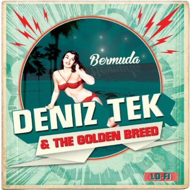 Deniz Tek & The Golden Breed BERMUDA Vinyl Record