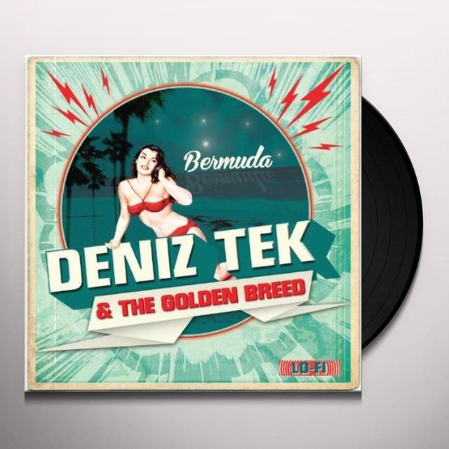 Deniz Tek & The Golden Breed BERMUDA Vinyl Record