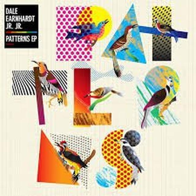 Dale Earnhardt Jr Jr PATTERNS Vinyl Record - Digital Download Included