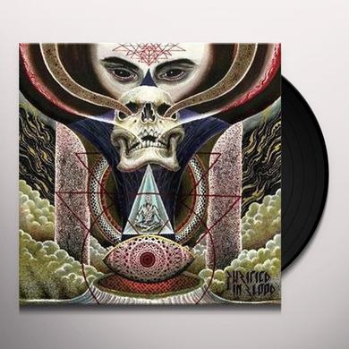 Purified In Blood FLIGHT OF A DYING SUN Vinyl Record