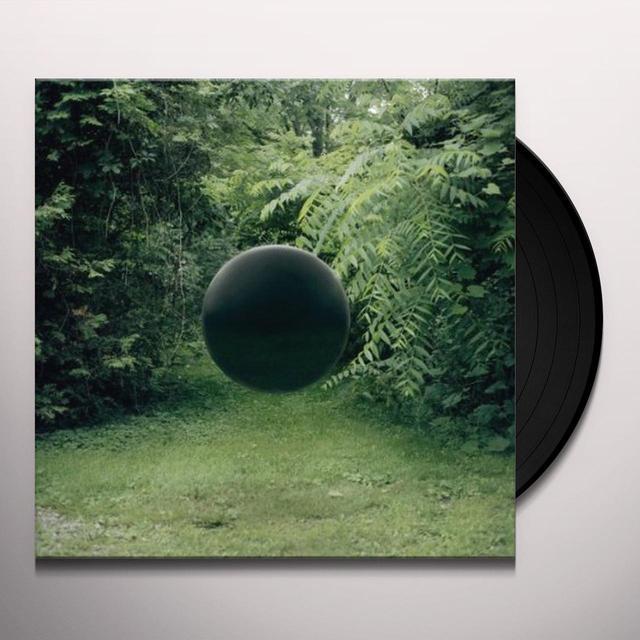 Braids IN KIND / AMENDS Vinyl Record