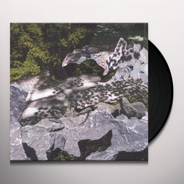 Geoff Mullen FILTERED WATER Vinyl Record